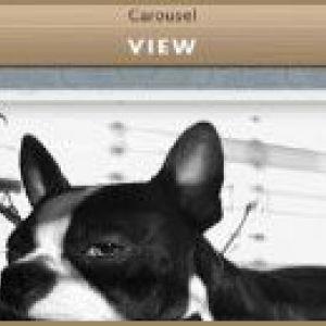 Carousel: додаток для перегляду instagram з маку