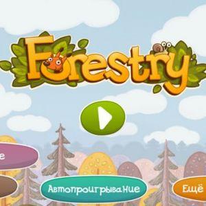 Forestry - прогулянка через казковий ліс